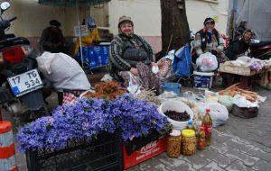 Baharın müjdecisi sümbüller pazara düştü