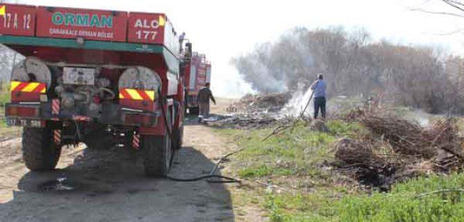Bayramiç'te ağaçlık alanda yangın