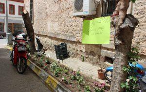 Çiçek hırsızına afişli uyarı