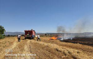 Türkmenli'de anız yangını