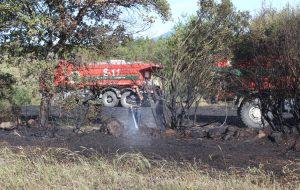 Tarla yangını ormana sıçramadan söndürüldü