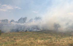 Otluk alanda korkutan yangın