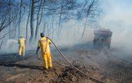 Çavuşköy'de arazi yangını
