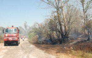 Bayramiç'te 50 dönüm tarım arazisi zarar gördü