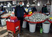 Balık fiyatları düşmek bilmiyor