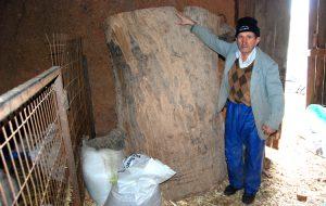 Meşe ağacından asırlık silo