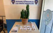 Bayramiç polisinden uyuşturucu baskını
