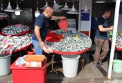 Balık pazarında fiyatlar tatmin etmiyor